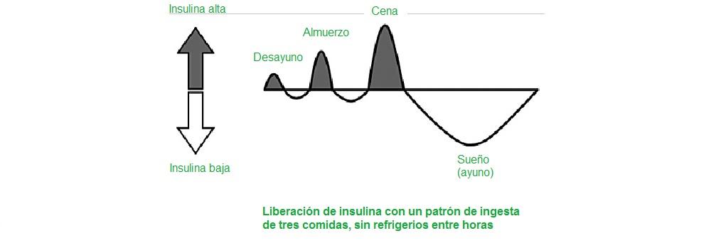 Liberación insulina ingesta tres comidas